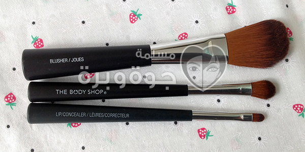 the body shop brushes1