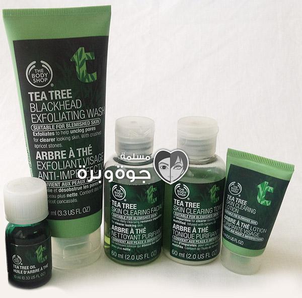tea-tree-kit